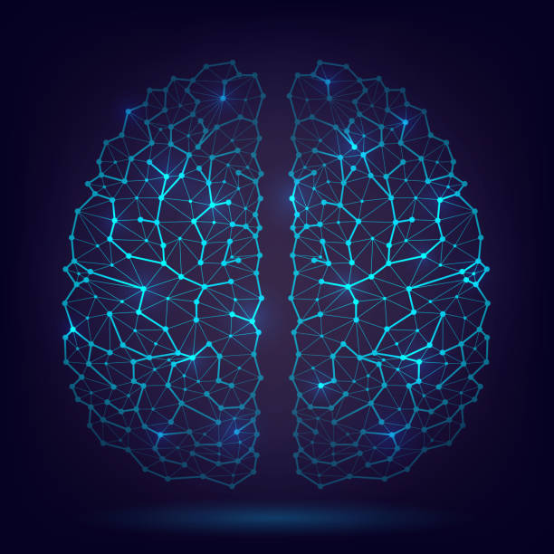 The human brain, neurons and axons Glowing vector human brain, artificial intelligence, science, intellect, axons and neurons, brain structure neural axon stock illustrations