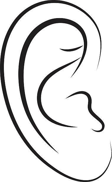 Human ears clipart black and white - photo#46