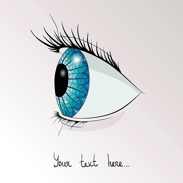 L'oeil humain dans le profil - Illustration vectorielle
