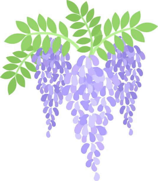 438f224507b The illustration of flower vector art illustration