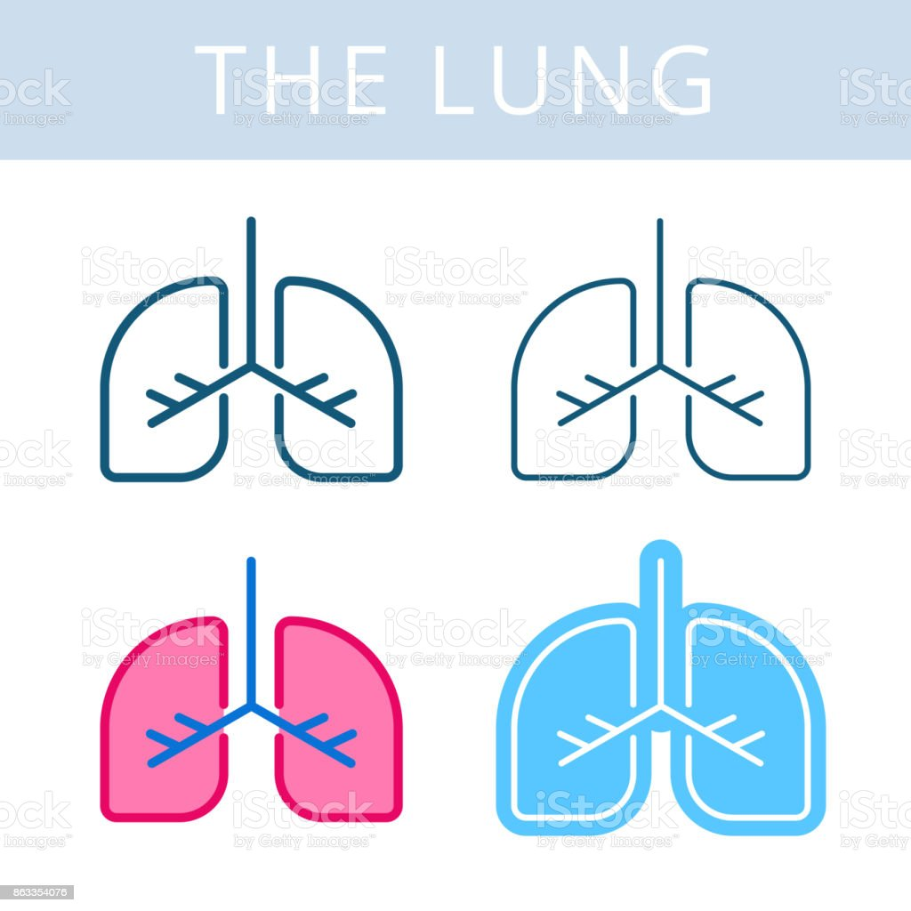 The internals icons. Lung and respiratory system vector outline symbols. vector art illustration
