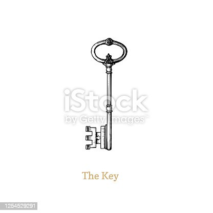 istock The Key of Knowledge and Power,vector illustration 1254529291