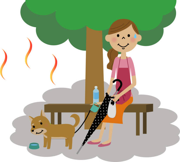 The lady who takes a heat exhaustion measure 犬の散歩中に木陰で熱中症対策する女性のイラストです。 heat wave stock illustrations