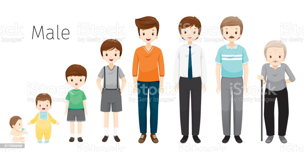 The Life Cycle Of Man. Generations And Stages Of Human Body Growth. Different Ages, Baby, Child, teenager, adult, Old Person vector art illustration