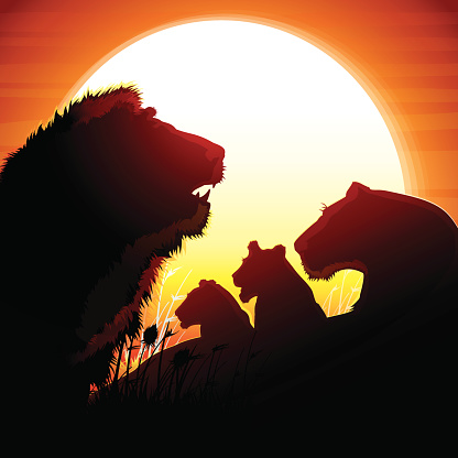 The Lion's orgullo siluetas de safari contra sol cálido
