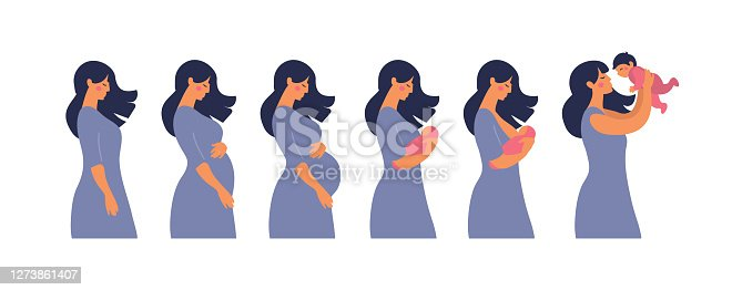 istock The main stages of pregnancy and motherhood. Set for infographics and animation. Pregnancy, mother with newborn, breastfeeding. Flat stock vector illustration isolated on white background. 1273861407