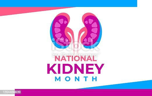istock The National Kidney Month vector illustration. Banner, poster for prevention of kidney diseases. Two human kidneys in an abstract trend style. American educational campaign. Urogenital system. 1204456639