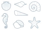 Outlines of sea shells, seahorse and starfish