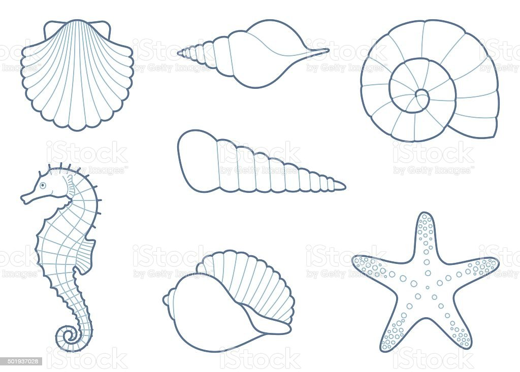The outlines of sea creatures vector art illustration