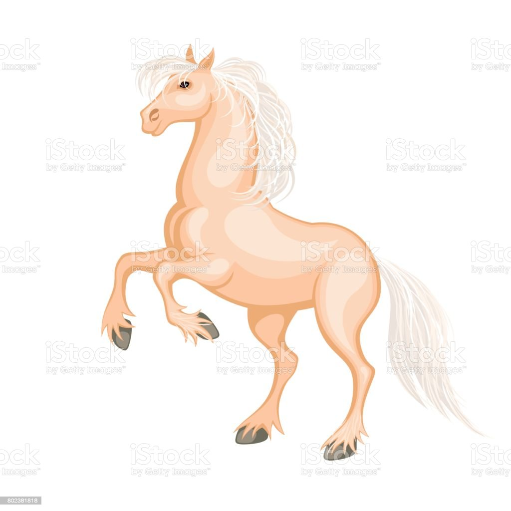 The Palomino Horse Stock Illustration Download Image Now Istock