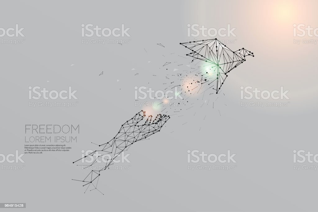The particles, geometric art, line and dot of bird flying out of hand. royalty-free the particles geometric art line and dot of bird flying out of hand stock vector art & more images of abstract