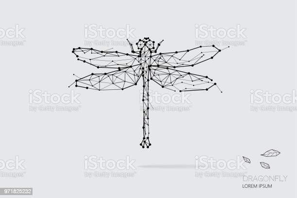 The particles geometric art line and dot of dragonfly vector id971825232?b=1&k=6&m=971825232&s=612x612&h=ws1rdhixnw9laqeaxpsrbctf9kvupbuxja6uw5tbru0=