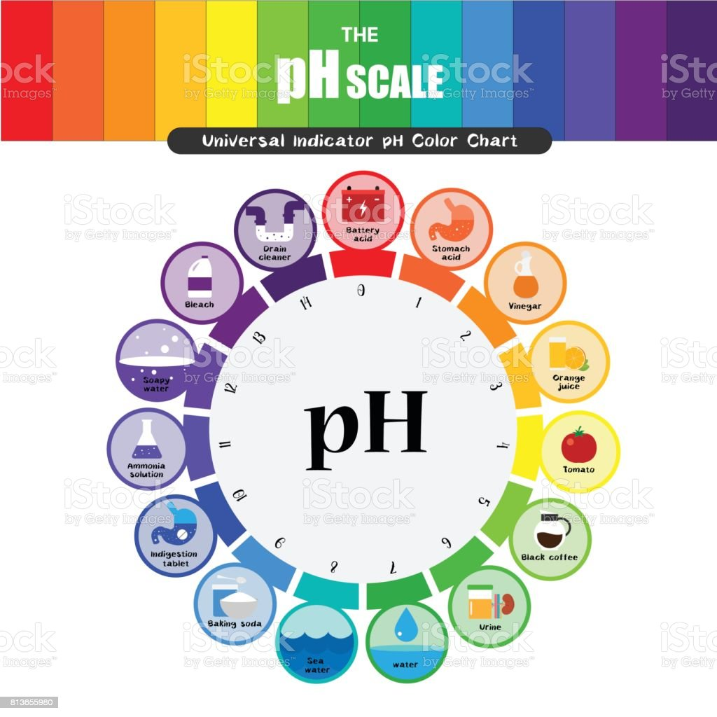 The ph scale universal indicator ph color chart diagram stock the ph scale universal indicator ph color chart diagram royalty free the ph scale universal nvjuhfo Choice Image