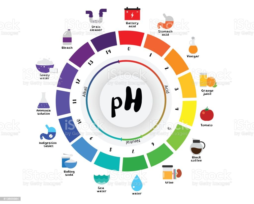 The ph scale universal indicator ph color chart diagram stock the ph scale universal indicator ph color chart diagram royalty free the ph scale universal nvjuhfo Images