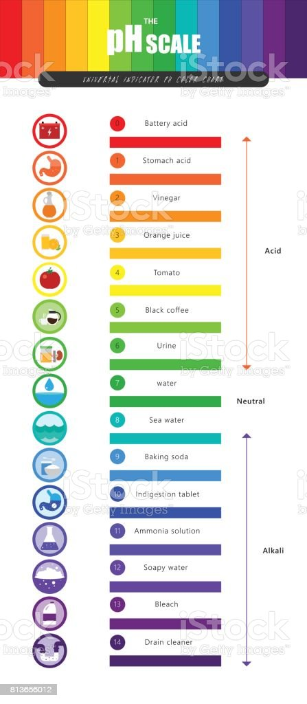 the ph scale universal indicator ph color chart diagram royalty-free the ph  scale universal