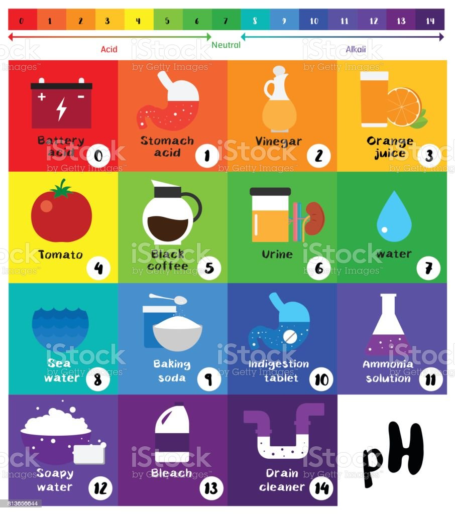 The Ph Scale Universal Indicator Ph Color Chart Diagram Stock ... for Ph Scale Universal Indicator  15lptgx