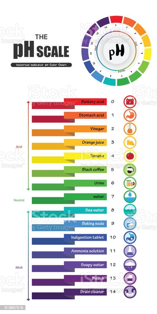 The Ph Scale Universal Indicator Ph Color Chart Diagram Stock Vector