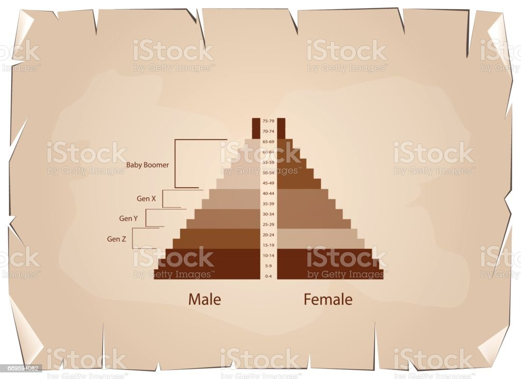 The Population Pyramids Graphs with 4 Generation vector art illustration