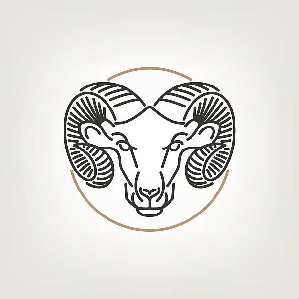 die ram head logo-symbol-design. - bergziegen stock-grafiken, -clipart, -cartoons und -symbole