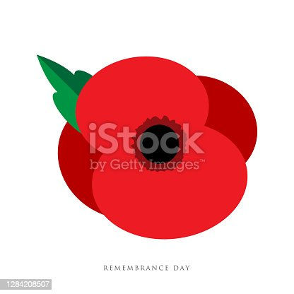 istock The remembrance day. Poppy appeal. Flower for Remembrance Day, Memorial Day, Anzac Day in New Zealand, Australia, Canada and Great Britain. 1284208507