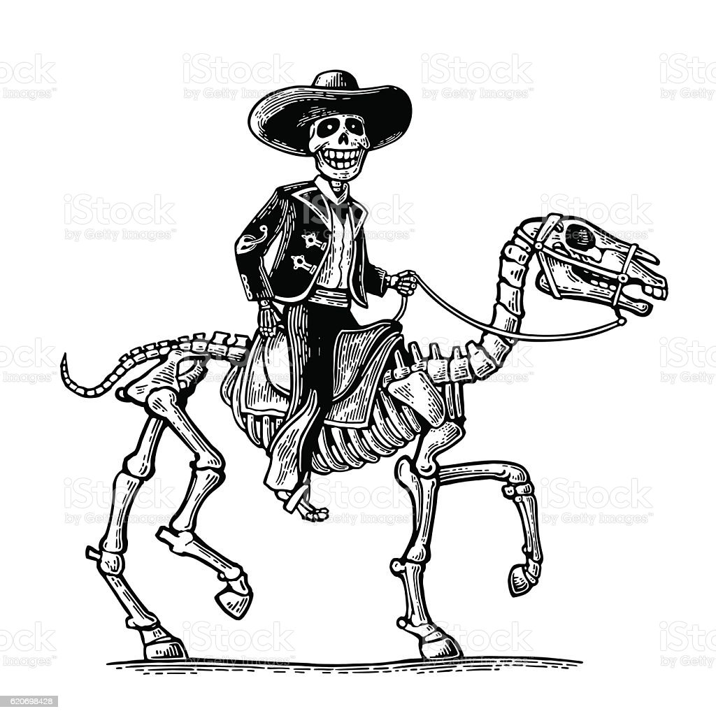 The rider Mexican man national costumes galloping skeleton horse vector art illustration