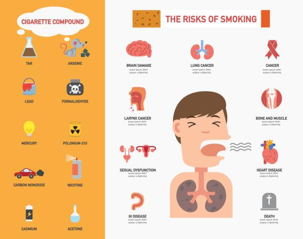 The risk of smoking infographics.illustration The risk of smoking infographics.vector illustration lead poisoning stock illustrations