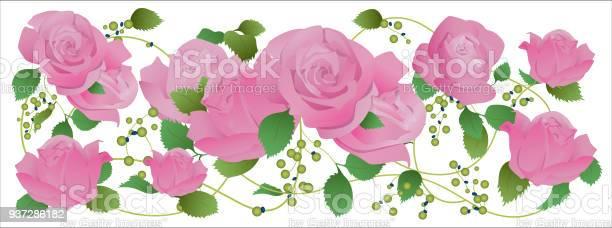 The rose vector vector id937286182?b=1&k=6&m=937286182&s=612x612&h=ne8iur58ywnmqi1ceutfpstawav6h7psioysl7f652w=