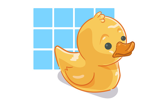 The Rubber duck