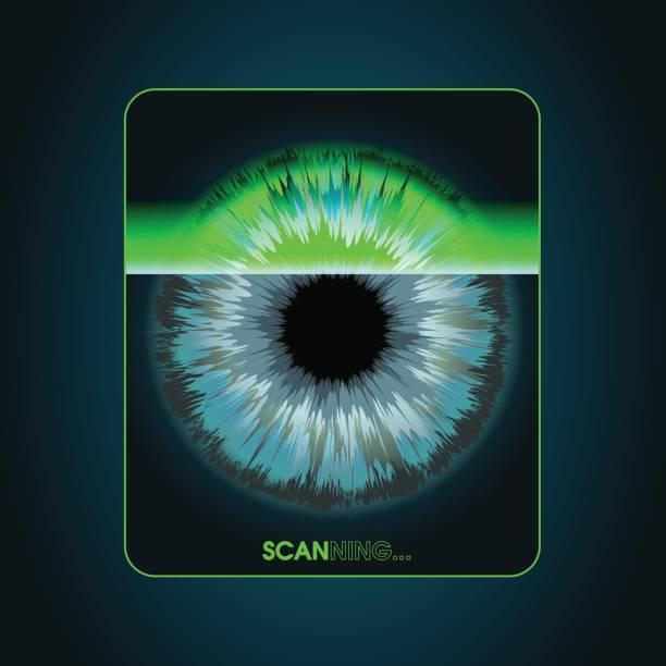 ilustrações de stock, clip art, desenhos animados e ícones de the scanning system of the retina, biometric security devices - going inside eye