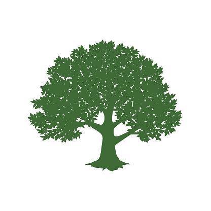 Green tree design. Vector illustration of nature. Eco logo design. Abstract organic design. Vector silhouette of a tree.