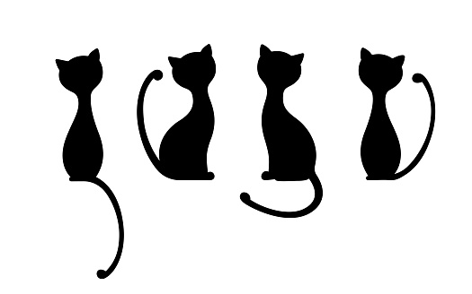 The silhouettes of black elegant cats.