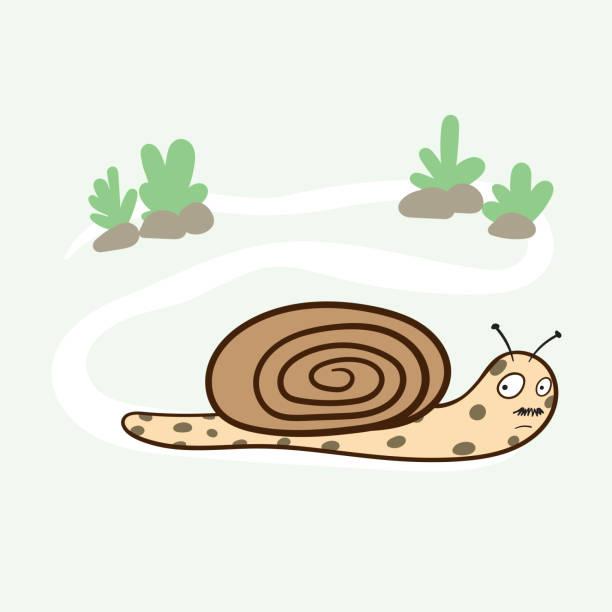 The snails stroll slowly in the garden.Doodle art concept,illustration painting vector art illustration
