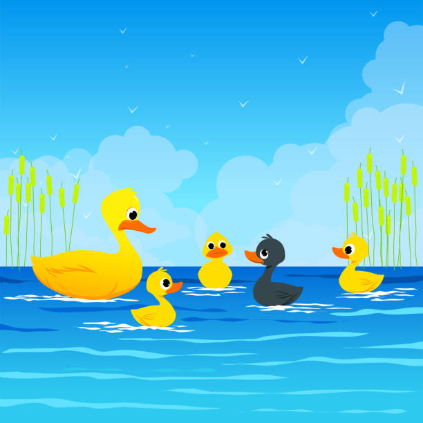 The Ugly Ducking- Aesop's Fairy Tale. The Ugly Ducking- Aesop's Fairy Tale. Vectoral Illustration for Children Books, magazines, Web Pages and Blogs. ducking stock illustrations