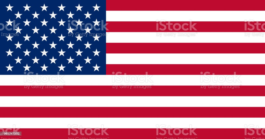 The United States of America Flag, vector illustration vector art illustration