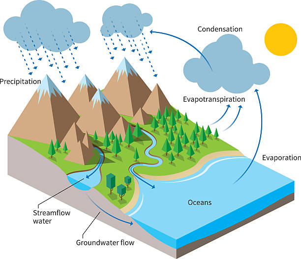 essay on water cycle in nature