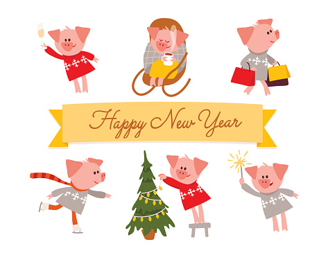 The year of Pig.