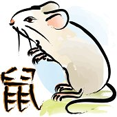 The year of rat