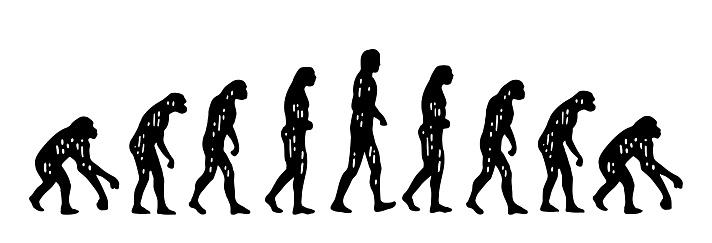 Evolution Affe Mensch