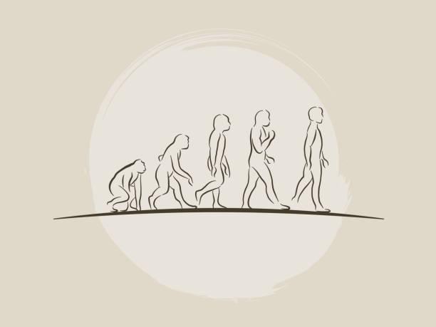Teoría de la evolución de la ilustración de vector hombre - desarrollo humano - dibujados a mano dibujo - ilustración de arte vectorial