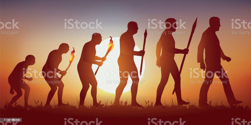 Theorie der Evolution der menschlichen Silhouette von Darwin. - Lizenzfrei Affe Vektorgrafik