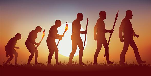 Theorie Der Evolution Der Menschlichen Silhouette Von Darwin Stock Vektor Art und mehr Bilder von Affe