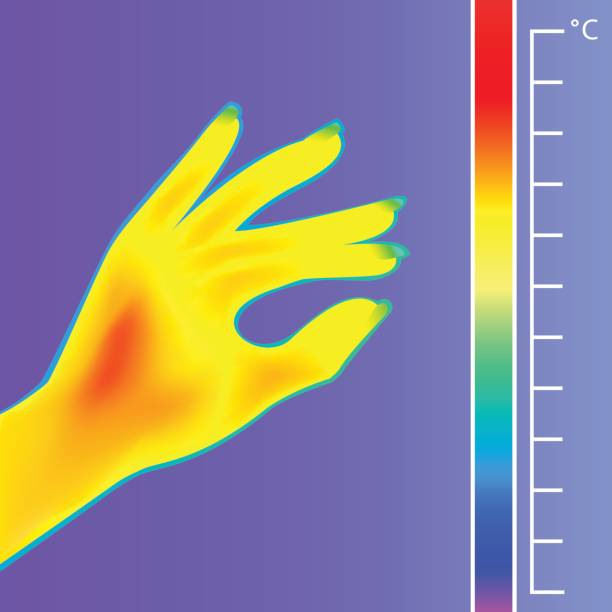 wärmebildkamera menschliche hand. das bild einer silhouette-arm mit infrarot-thermograph. - infrarotfotografie stock-grafiken, -clipart, -cartoons und -symbole