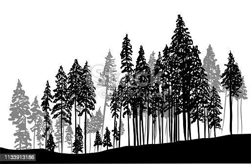 treeline with pine trees for the Christmas season designs