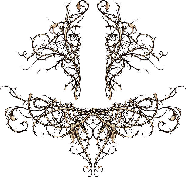 Thicket Scroll Design Accents Vector set of two highly detailed thorny thicket design elements. These scroll ornaments are perfect for accents in backgrounds, crests, banners, etc. Each set is made of only three colors (outline, base color and shadow) and grouped. sharp stock illustrations