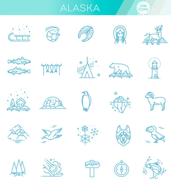 thin line arctic icons set, north pole outline logos vector illustration - antarctica travel stock illustrations