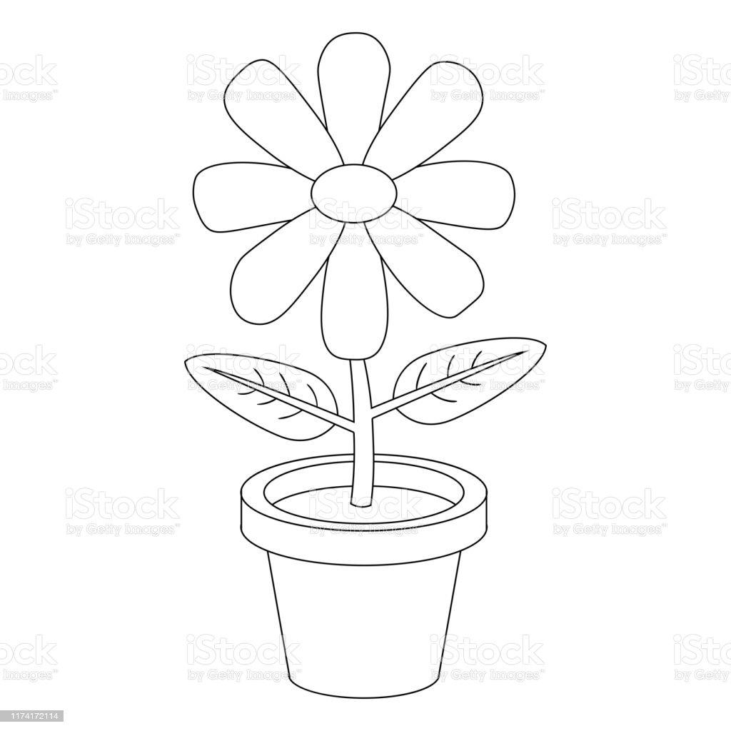 Bunga Kartun Garis Tipis Dalam Pot Terisolasi Di Latar Belakang Putih Mewarnai Halaman Buku Ilustrasi Vektor Ilustrasi Stok Unduh Gambar Sekarang Istock