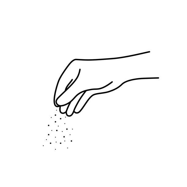thin line chef woman hand with salt thin line chef woman hand with salt. flat linear drawing style trend modern black graphic art design isolated on white background. concept of one person arm sprinkled spices or feeding fish salt seasoning stock illustrations