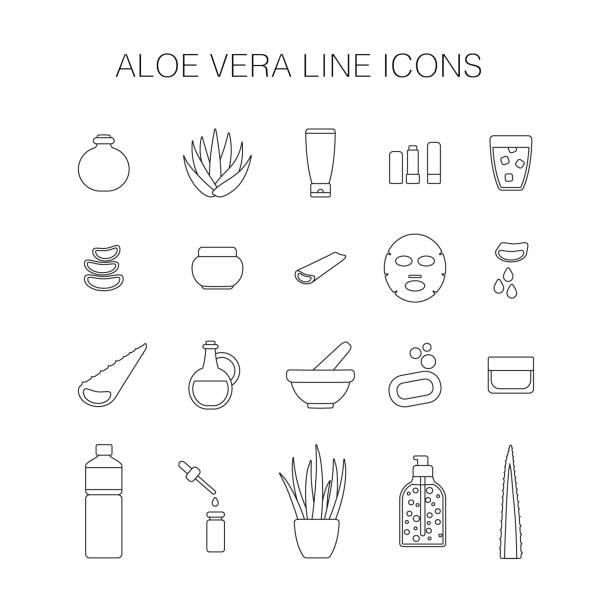 thin line icon set aloe vera plant and products - aloe vera stock illustrations