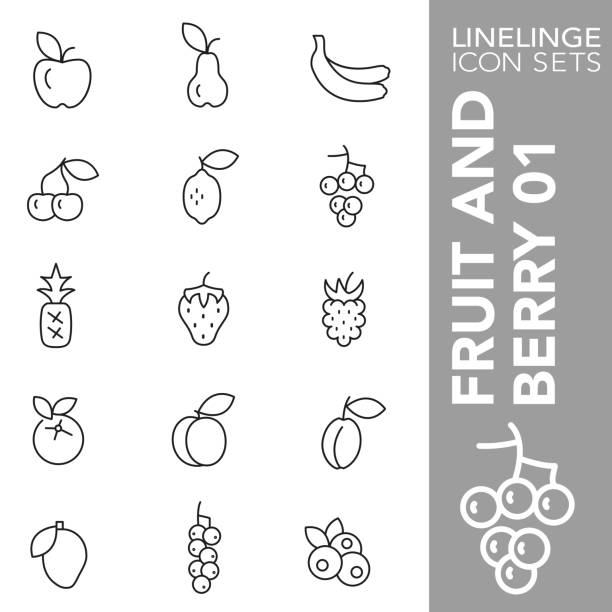 Thin line icon set of Fruit and Berry 01 High quality thin line icons of fruits and berry. Linelinge are the best pictogram pack unique design for all dimensions and devices. Vector graphic, logo, symbol and website content. black currant stock illustrations