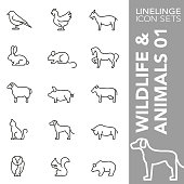 High quality thin line icons of wildelife and animals. Linelinge are the best pictogram pack unique design for all dimensions and devices. Vector graphic, logo, symbol and website content.